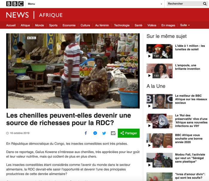 Chenilles source de richesse RDC